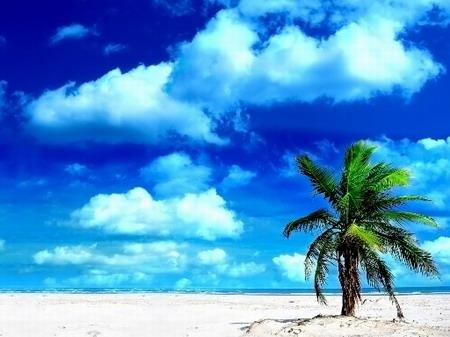 Картинки на телефон про лето